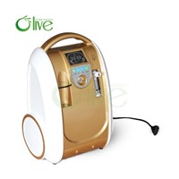 Travel Oxygen Concentrator Battery Operated Oxygen Concentrator OLV-B1
