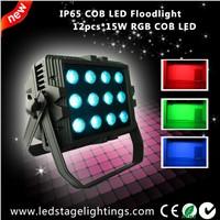 New arrived,15W COB LED Floodlight 12pcs LEDs inside,China LED floodlight
