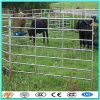 Farming Equipment 6 round iron rail Cattle cow Headlocks For Sale