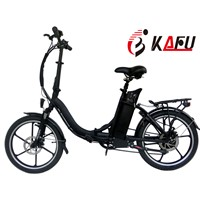 Easy Rider Bike with Electric