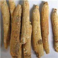wholesale chinese plant sophora root extract powder oxymatrine