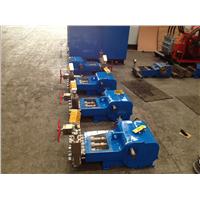 triplex Reciprocating Pump (WP2-S)