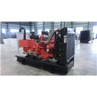 Nature gas Generator (N13-N1250)