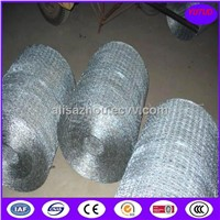 High Quality Hexagonal Wire Mesh/Chicken Wire/Chicken Cage