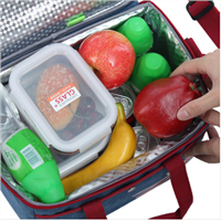 insulated lunch/cooler/storage bags for adults