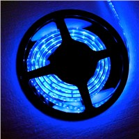DC12 V Flexible LED Light 30LEDs Per Meter SMD5050 Blue Color