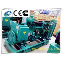Biogas generator set biomass power generation 48KW