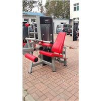 Seated Leg Curl (SA12)/Fitness Equipment/Indoor Fitness Machine