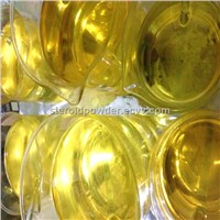 Testosterone  Propionate  100mg/mL Test Pro shortest-estered testosterone steroid