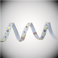 High Lumens and Brightness LED Strip 24v RGBW Flexible LED Strip
