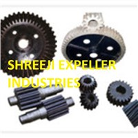 Gears and Pinions for Oil Expeller/Oil Screw Press