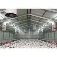 IP65 Waterproof T8 LED Tube Light/2FT Driver-Free LED Tube/ 9W Dimmable  Tube Lighting For Poultry