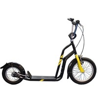 Cool Hi -Ten Steel Frame Kick Scooter with CE Approved