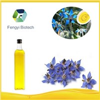 manufacturer supply Organic borage seed oil in halal ISO