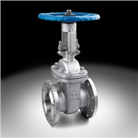 API gate valve for chemical industry