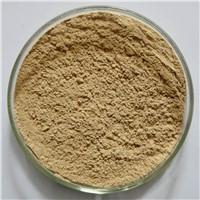 50% chlorogenic acids Green coffee bean extract