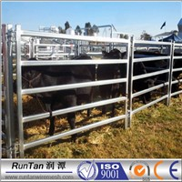 factory high quality horse walkers/Livestock Shed Panels with Chain Connection/horse steel fencing