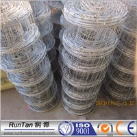 woven wire fence/Goat sheep Fence/cattle field Fence