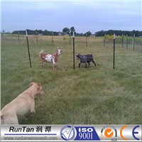 galvanized cheap field fence called farm fence and goat fence
