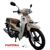 PT110-C90 2015 New Design Modern Chongqing Motorcycle