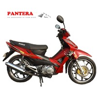 PT110-L 2015 Hot Sale Popular New Motorcycle