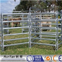 portable horse panels Height x Length 1.6mx2.1m 32mm O.D ( factory price)