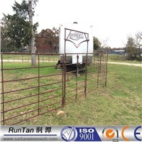 Galvanized cattle panels round with Steel Tube 1.6m high with 5 bars/rails