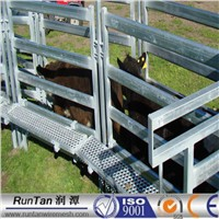 Livestock Panel Available in 3/4/ 5 or 6 Rails