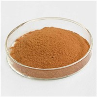 Tannic Acid Galla Chinensis Extract CAS No 1401-55-4