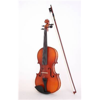 Violin for music instrument violin
