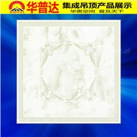 Rolling Stone Transfer Series Decorative Ceiling Tiles (HT-557)