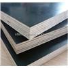 Cheap 18mm Poplar Core Black Film Faced Marine Plywood in 4*8