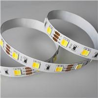 Adjustable LED Lights Flexible Strip 5050 W+WW 60led/m DC12V