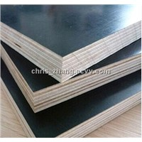 Cheap 18mm Poplar Core Black Film Faced Marine Plywood in 4*8