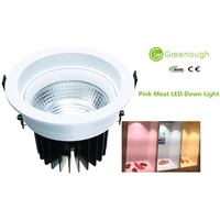 Pink LED Down Light/Fresh Meat LED Food Lighting/Ceiling COB LED Downlight For Rosewood Funiture