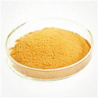 Milk Thistle Extract Silybum Marianum Extract Silymarin 80% Silybin