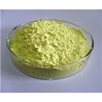 NF11 DAB Rutin Sophora Japonica Extract Rutoside CAS No.153-18-4