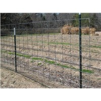 Solid Steel Pole For Cattle Fence Enclosure
