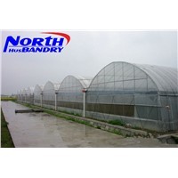 twin-wall polycarbonate sheet -green house materials