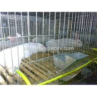 3 Tiers 12 Door Rabbit Cage Anping Manufacturer