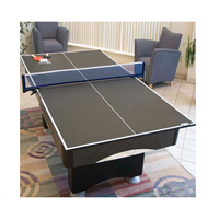 butterfly table tennis racket/ping pong table