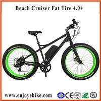 PE-TDE12Z 4.0+ Electric bicycles ELECTRIC BIKE ON SALE