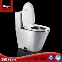 Security Grade Stainless Steel Wash Down Toilet