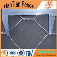 Lowest Price 1/4 Inch Hexagonal Wire Net Chicken Mesh for Plastering