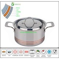 Wholesale Latest 5ply stainless steel small pot