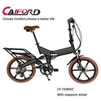 Alloy Foldable 20inch electric bike
