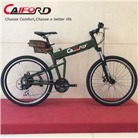 Folding hidden battery electric bike