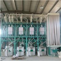50T hot sale wheat flour mill price