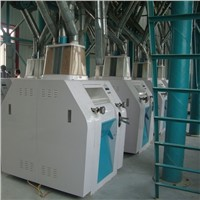 100t per day wheat flour production factory