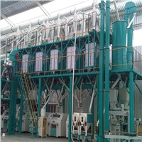 maize/corn flour milling plant